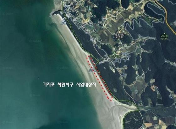 태안해안사구 20년 만에 축구장 9배 넓이 복원